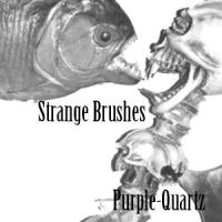 Strange Brushes by Purple-Quartz-Brush