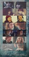 History Of Ron And Hermione by XxBloodOfVampirexX