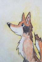 Little Turquin Anthro Profile by Erinwolf1997