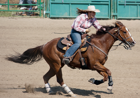 Rodeo9-2014 by Lonewolf-Eyes