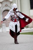 Assassins Creed by AkatsukiR3DBL4CK
