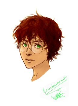 Harry Potter experiment by fictionsdreams