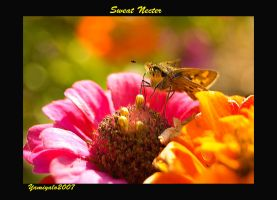 Sweat Necter by yamiyalo