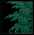 Blue Spruce by Colliemom