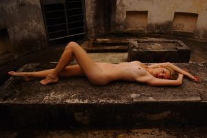 lay lady lay by andre-j