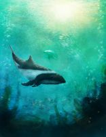Magellanic dolphin by Geirahod