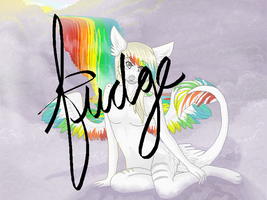 the technicolor phase by fudge