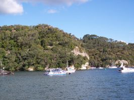 More from Whitianga 4 by OWTC-Stock