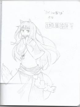 Holo the Wise Wolf by James-is-a-Fanboy