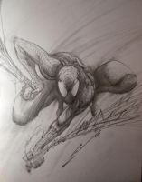 SPIDERMAN SKETCH by Sandoval-Art