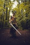 forest warrior 4 by CuCat