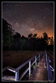 Milky Way Walkway by aFeinPhoto-com