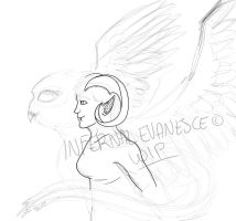 .:WIP:. Aesare Cupcha by InfernalEvanesce