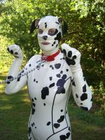 Custom Made Latex Dogsuit by Ange1ica