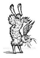 Hare, Standing on End by shmeeden