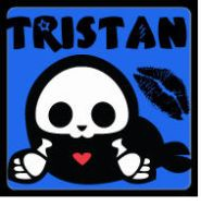 tristan the seal skelanimals by xLaylarrRAWRx
