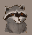 Coon sketch by Alisha-town