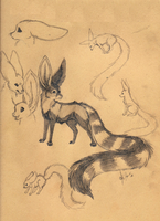 Cacofendox sketches and info by Krissyfawx