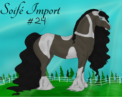 Soife Import 24 by NativeWolf330