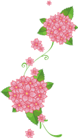 pink flower 2 by MaxandPercy4ever