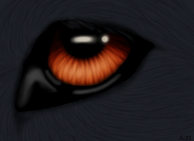 Eye contest entry by silent33