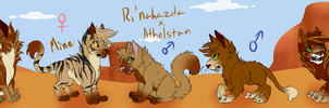 Bedouin Pride || Litter 1 || Closed by Amiookamiwolf