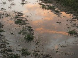 a sky in a puddle of grass by Ramrum