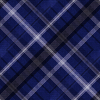 Dark Plaid by SweetAmorito