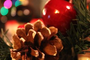 Christmas by Thepieholephotograph