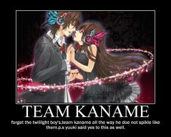 Team kaname of vampier knight by itachiandByakuyalove