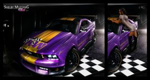 vMod - Shelby Mustang by sfdesignz