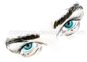 the look by colorpop