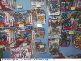 Sat. 08-30-2014 - TF Sections Image #002 by Transfan2