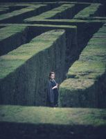 labyrinth by intels