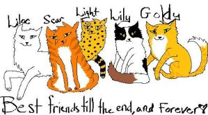 The four best buddies of thunderclan by Lightleopard