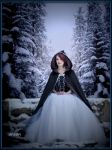Winter by anson7