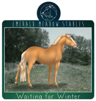EMS Waiting for Winter by just-sora