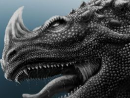 dragon Wip 28/8/12 by scumpunx