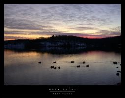 Dusk Ducks by wulfster