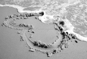 Heart by ilfranzo