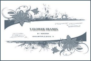 Flower Frames by generosa