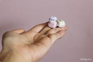 Miniature Petit Four Glaces by Aiclay