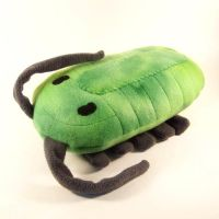 Little green trilobite by WeirdBugLady