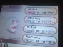Shiny hacked furret for sale :) by alucardserasfangirl