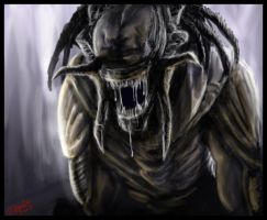Predalien-AVP by Destinyfall