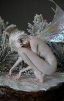 Winter Wonderland Tinkerbell 2 by wingdthing