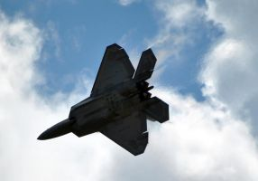 F-22 Raptor: Aircraft to be Feared by fosspathei