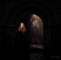 The veil is thin by VisualModality