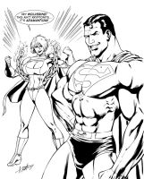 Powergirl Superman by smittyd