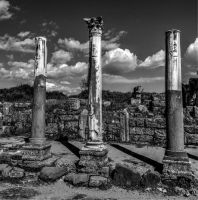 PERGE by mecengineer